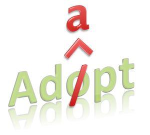 Adapt don't adopt