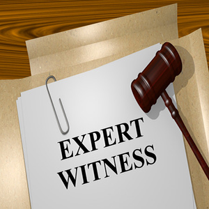 how to search for expert witnesses